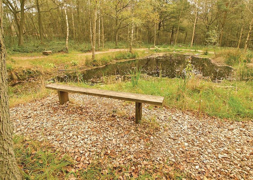 Ramshorn-Estate-Woodland-Lodges